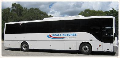 luxury coach, seat belts, aircon,
